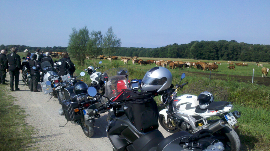Den Osten erfahren mit dem Motorrad in Vorpommern und auf Rügen