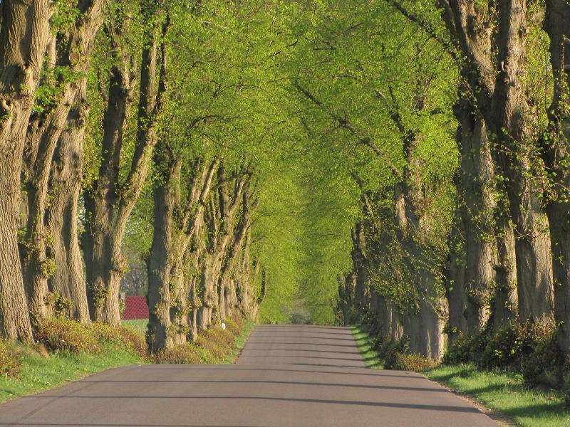 """Den Osten """"erfahren"""" – Altmark und Uckermark – ausgebucht"""