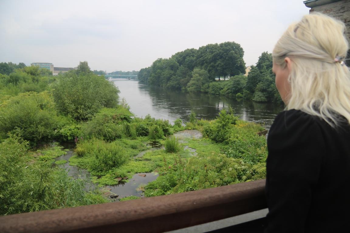 Blick auf die Saarner Ruhrinsel in Mülheim an der Ruhr.